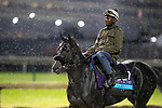 November 1, 2018: Forty Under, trained by Jeremiah C. Englehart, exercises in preparation for the Breeders' Cup Juvenile Turf at Churchill Downs on November 1, 2018 in Louisville, Kentucky. Alex Evers/Eclipse Sportswire/CSM