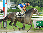 Notacatbutallama (no. 2), ridden by John Velazquez and trained by Todd Pletcher, wins the 29th running of the grade 2 National Museum of Racing Hall of Fame Stakes for three year olds on August 9, 2013 at Saratoga Race Course in Saratoga Springs, New York.  (Bob Mayberger/Eclipse Sportswire)