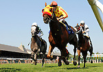 09 August 15: Tobruk with jockey Eibar Coa passes the finish line for the first time before finishing second in the 7th race prior to the running of the grade 1 Sword Dancer Invitational at Saratoga Race Track in Saratoga Springs, New York.
