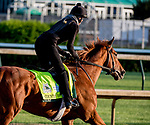 LOUISVILLE, KENTUCKY - APRIL 27: Country House, trained by William Mott, exercises in preparation for the Kentucky Derby at Churchill Downs in Louisville, Kentucky on April 27, 2019. Scott Serio/Eclipse Sportswire/CSM