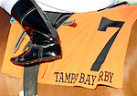 10 March 13: Odysseus (no. 7), ridden by Rajiv Maragh and trained by Tom Albertrani, wins the 30th running of the grade 3 Tampa Bay Derby for three year olds at Tampa Bay Downs in Tampa, Florida.