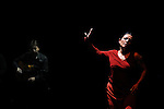 Rencontres<br /> <br /> Avec :<br /> Carolyn Carlson (danse), Eva Yerbabuena (danse)<br /> Et Paco Jarana (guitare), José Valencia (chant)<br /> Costumes : Chrystel Zingiro<br /> Théâtre National de Chaillot<br /> Le 26/06/2013<br /> © Laurent Paillier / photosdedanse.com