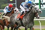 Grassy with Garrett Gomez up win on Opening Day the Grade 2 Bowling Green Handicap for 3-year old & ups, 1 3/8 mile on the turf, at Belmont Park. Trainer Christophe Clement.  Owners Claiborne Farms & Adele B. Dilschneider