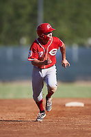 Cincinnati Reds Alejo Lopez (82) during an Instructional League game against the Milwaukee Brewers on October 14, 2016 at the Maryvale Baseball Park Training Complex in Maryvale, Arizona.  (Mike Janes/Four Seam Images)