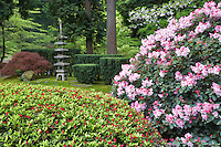 Japanese Garden with blooming rhododendrons and Pegoda. Portland, Oregon