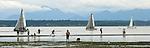 Seattle, Puget Sound, Seattleites walk the tide flats on a spring low tide, Golden Gardens Park, Ballard, Washington State, Pacific Northwest, USA,