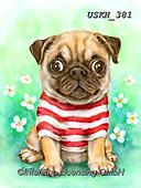 Kayomi, CUTE ANIMALS, LUSTIGE TIERE, ANIMALITOS DIVERTIDOS, paintings+++++,USKH381,#ac#, EVERYDAY