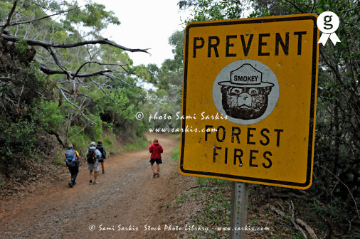 Hikers on forest path by forest fires warning sign (Licence this image exclusively with Getty: http://www.gettyimages.com/detail/92907714 )