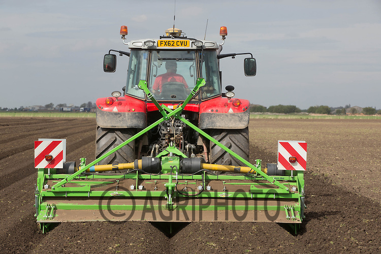 Bed forming ready for planting potatoes  in the Cambridgeshire Fens<br /> Picture Tim Scrivener 07850 303986