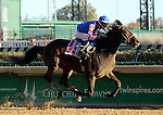 November 14, 2015 Hand of Power (Chris Landeros) wins the 7th race at Churchill Downs, a one mile maiden race for 2 year olds. Owner Lothenbach Stables LLC (Robert J. Lothenbach), trainer Ian R. Wilkes. By Candy Ride x Hand Crafted (Mineshaft) ©Mary M. Meek/ESW/CSM