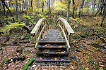 Rainbow Bridge, Rachel Carson Trail, Harrison Hills Park, Pennsylvania