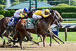SARATOGA SPRINGS - AUGUST 27: Cavorting #5, ridden by Javier Castellano, wins the Personal Ensign Stakes on Travers Stakes Day at Saratoga Race Course on August 27, 2016 in Saratoga Springs, New York. (Photo by Sue Kawczynski/Eclipse Sportswire/Getty Images)