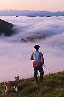 Europe/France/Aquitaine/64/Pyrénées-Atlantiques/Pays-Basque/Aussurucq: Jean-Paul Erdozainy Etchart , berger, rassemble son troupeau de brebis en estive dans les paturages d'Ahusquy [Autorisation : 2011-129] [Autorisation : 2011-128]