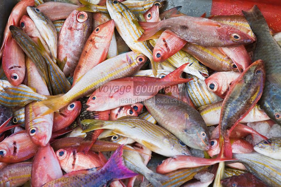 France/DOM/Martinique/ Saint-Pierre: le marché - détail étal d'un pêcheur à la nasse- poissons de pêche côtière