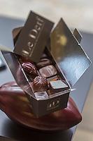 Europe/France/Bretagne/56/Morbihan/Vannes:   Chocolats: Le Derf  de   Bruno Le Derf, chocolatier
