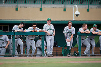 Dartmouth Big Green head coach Bob Whalen (2) in the dugout during a game against the USF Bulls on March 17, 2019 at USF Baseball Stadium in Tampa, Florida.  USF defeated Dartmouth 4-1.  (Mike Janes/Four Seam Images)