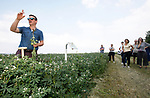 Foto: VidiPhoto<br /> <br /> RANDWIJK – Er liggen grote kansen voor Nederlandse akkerbouwers in de lupineteelt. Bovendien is dit eiwitrijke superfood, een enorme stikstofbinder en bevordert de teelt de biodiversiteit en terugkeer van de verdwenen donkere tuinhommel. Alles valt of staat echter met de consumptie van de peulvrucht. De meest consumenten hebben nog nooit van lupine gehoord. Dat is de conclusie van de inspiratiedag voor telers, onderzoekers en verwerkers van lupine vrijdag op Ekoboerderij De Lingehof in Randwijk. Op dit moment is er slechts een achttal akkerbouwers dat lupine teelt. Daardoor is er ook nauwelijks geld voor beter onderzoek en/of veredeling cq vermeerdering.