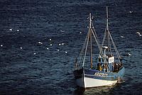 Europe/France/Bretagne/29/Finistère/Baie des Trépassés: Bateau de pêche
