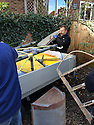 """13/03/15<br /> <br /> **Collect Photo - Best Quality Available**<br /> <br /> Colin Temple-Smith loads parts for four Tiger Moths discovered in Belgiun barn into trailer.<br /> <br /> ***FULL STORY HERE:   http://www.fstoppress.com/articles/tiger-moth-restorations/    ****<br /> <br /> You may remember spending hours toiling over Airfix models, painstakingly following intricate instructions and trying not to glue your fingers together before painting your own miniature version of one of the RAF's or Luftwaffe's finest aircraft. Then spare a thought for one man who has just helped to restore and put together one World War Two Tiger Moth and is about to start piecing together another FOUR aircraft that were discovered in bits in a barn.<br /> Sixty-year-old Colin Temple-Smith – who wears a moustache that any Wing Commander would be proud of – has spent a lifetime restoring vintage cars and motorcycles and recently quit his job as a window fitter to help re-build the five bi-planes that will become part of a growing fleet of Tiger Moths at Derbyshire based Blue Eye Aviation.<br /> <br /> Today saw the first of the fully-restored five aircraft take to the skies.<br /> <br /> """"It's just like working on old bikes and cars, although they're a lot more fragile"""" explained Colin, whose wife runs the Aviators Café at Darley Moor Airfield near Ashbourne.<br /> <br /> """"When I was a teenager I used to be a member of a modelling club, making flying models from wood and canvas. They're very similar to build – it's really just the size that's changed with these.<br /> <br /> All Rights Reserved: F Stop Press Ltd. +44(0)1335 418629   www.fstoppress.com."""