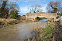 Heavy water flow in fresh water stream due to heavy winter rainfall and drainage from farmland - Lincolnshire, December