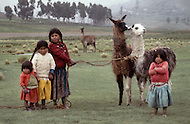 Children used as shepards in Bolivia - Child labor as seen around the world between 1979 and 1980 - Photographer Jean Pierre Laffont, touched by the suffering of child workers, chronicled their plight in 12 countries over the course of one year.  Laffont was awarded The World Press Award and Madeline Ross Award among many others for his work.