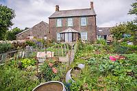 Vegetable garden and farmhouse, Millom, Cumbria.