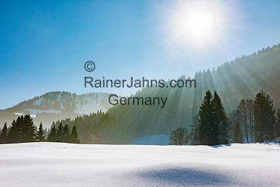 Deutschland, Bayern, Schwaben, Oberallgaeu, Oberstdorf, Ortsteil Tiefenbach: auf der Alpe Dornach | Germany, Bavaria, Swabia, Upper Allgaeu, Oberstdorf, district Tiefenbach: area around alpine pasture Dornach