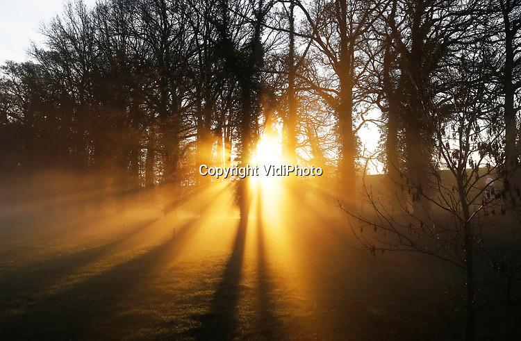 Foto: VidiPhoto<br /> <br /> HERVELD – Zonnestralen in coronatijd; Een zonsopgang en snel optrekkende mist luidt woensdag een prachtige pre-winterdag in met temperaturen in de dubbele cijfers. Ook de komende dagen worden temperaturen ruim boven normaal verwacht met regelmatig zon. En dat levert aan het begin van de ochtend prachtige beelden op, zoals bij het Loenense Bos in Herveld. Zonnestralen krijgen vrij spel in een weiland waar tot voor kort nog koeien graasden.