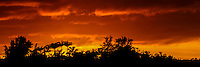 Last light over Crater Hill, North Shore, Kaua'i.
