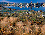 Mono Basin Scenic Area, CA  © Mary Liz Austin /<br /> Evening light on grasses and distant tufa formations at the south shore of Mono Lake