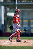 Boston Red Sox catcher Jake Romanski (36) during a minor league Spring Training game against the Baltimore Orioles on March 16, 2017 at the Buck O'Neil Baseball Complex in Sarasota, Florida. (Mike Janes/Four Seam Images)