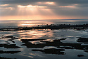 San Elijo Lagoon Afternoon