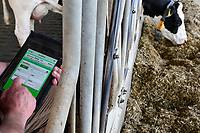 GERMANY, Echem, smart dairy cow milk farm, digitalization of agriculture / DEUTSCHLAND, Landwirtschaftlichen Bildungszentrum (EBZ) in Echem, Digitalisierung im Kuhstall und Melkstand, Datenverarbeitung und Kontrolle mit tablet, Reinhold Koch, Ausbildungsleiter und verantwortlicher Herdenmanager