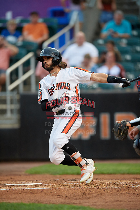 Aberdeen IronBirds Andrew Fregia (6) at bat during a NY-Penn League game against the Vermont Lake Monsters on August 19, 2019 at Leidos Field at Ripken Stadium in Aberdeen, Maryland.  Aberdeen defeated Vermont 6-2.  (Mike Janes/Four Seam Images)