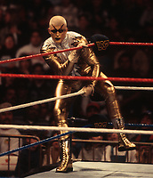 Goldust 1990<br /> Photo By John Barrett/PHOTOlink