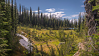 Landscape art scenic photograph of a destination high up in the mountains called Meadows in the Sky Parkway, near Revelstoke, in British Columbia, Canada.