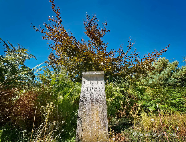 Small commemorative  monument, erected by the local council to mark the site of 'The Tubney Tree' in Tubney, Oxfordshire, UK and to celebrate the Millennium by the planting of a chestnut tree nearby.