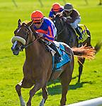 July 5, 2014: Minorette, ridden by Joel Rosario, wins the Belmont Oaks Invitational Stakes on Belmont Derby Day at Belmont Park in Elmont, New York. Scott Serio/ESW/CSM