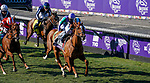 November 1, 2019 : Sharing, ridden by Manuel Franco, wins the Breeders' Cup Juvenile Fillies Turf on Breeders' Cup Championship Friday at Santa Anita Park in Arcadia, California on November 1, 2019. Chris Crestik/Eclipse Sportswire/Breeders' Cup/CSM