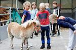 """Foto: VidiPhoto<br /> <br /> DEVENTER/VALBURG – Je kunt met school naar de boerderij, ook andersom is mogelijk. De boerderijdieren van Esther en Erik Timmermans (Keet's Kinderboerderij op Locatie) uit Valburg in de Betuwe bezochten vrijdag OBS Kolmenscate in Deventer. Op het schoolplein was een heuse miniboerderij ingericht met koeien, geiten, schapen, pony's, konijnen, cavia's een ezel en een losloopkip, 25 stuks in totaal. Alle klassen mochten om de beurt interactief en onder toezicht kennis maken met de dieren. Met het nieuwste boerenproject willen Esther en Erik niet alleen kinderen sociaal contact met boerderijdieren leren, maar vooral ook het echte verhaal over de boer en zijn bedrijf vertellen. """"In de praktijk is het lastig om met de hele school een boerderij te bezoeken, daarom draaien wij het om."""""""