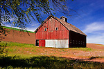 Abandoned barn standing at site of old homestead along the LaCross - Hay road off State Highway 26 along the Palouse Scenic Byway in Washington's famouse Palouse Country, a breadbasket of the world.