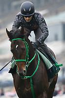 7 December 2017, Hong Kong - Mirco Demuro on Kiseki during track work prior to the Longines Hong Kong International Races at Sha Tin Racecourse in Hong Kong. Photo Sydney Low