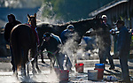 LOUISVILLE, KY - APRIL 30: Horses get baths on a chilly morning at Churchill Downs on April 30, 2018 in Louisville, Kentucky. (Photo by Scott Serio/Eclipse Sportswire/Getty Images)