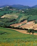 ITA, Italien, Marken, Landschaft bei Camerino   ITA, Italy, Marche, landscape near Camerino