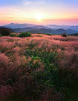Late summer sunrise, Tennent Mountain