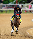 April 28, 2021: Hot Rod Charlie gallops in preparation for the Kentucky Derby at Churchill Downs in Louisville, Kentucky on April 28, 2021. EversEclipse Sportswire/CSM