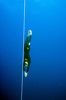 Free Divers decend down a vertical line during a free diving world record attempt in Sharm el Sheikh, Egypt, Red Sea, Northern Africa