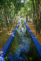 The Majorelle Garden botanical garden designed by French artist Jacques Majorelle in the 1920s and 1930s, Marrakech, Morocco