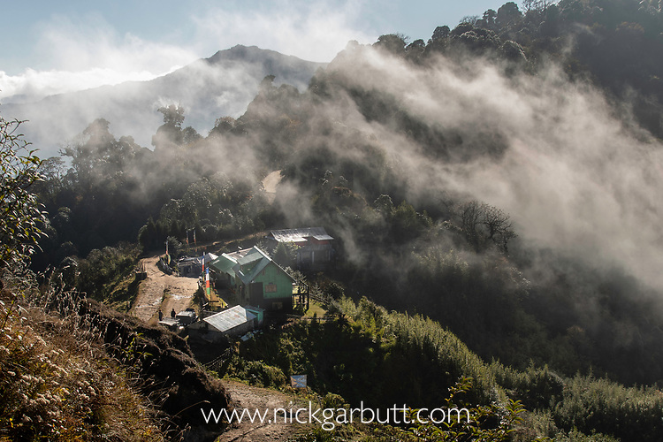Habre's Nest Lodge, Himalayan foothills, Singalila National Park, India.