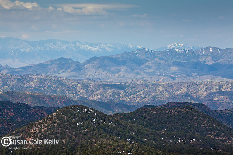 View of the Blue Range Wilderness, Apache-Sitgreaves National Forest, AZ, USA